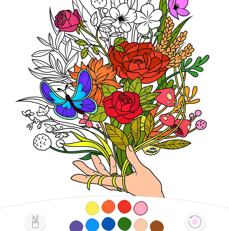 Colorfy.png