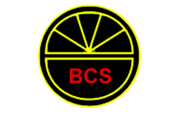 Summer 2020 BCS Newsletter